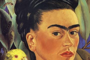 City tour ao Museu Frida Kahlo, Xochimilco e Universidade