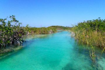 Sian Ka'an Biosphere from Playa del ...