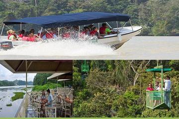 Formule combinée pour la forêt équatoriale de Gamboa au départ de...