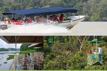 Panama City Rainforest Combo Pack