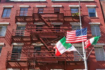 NYC Neighborhoods Small-Group Tour