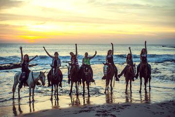 Acapulco Horseback Riding, Baby...