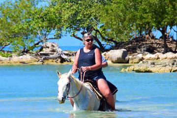 Negril Horse Back Ride and Swim