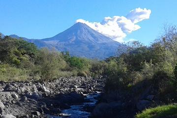 Colima Volcano Cultural Tour: Coffee...