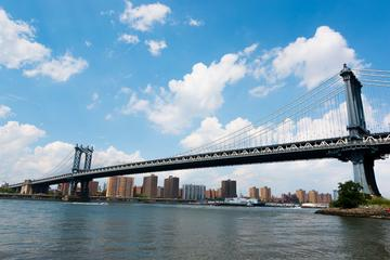 Det bästa av Brooklyn, halvdagstur med mat och kultur
