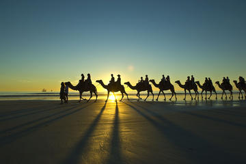 Afternoon Broome Town Tour Including Cable Beach with Optional Sunset...