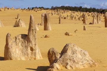 Pinnacles-Wüste, Koalas und Sandboarden mit dem Geländewagen...