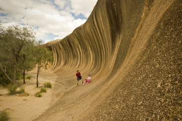 Tour a Wave Rock, York, con fiori