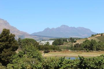 Constantia Beer and Wine Tour from...