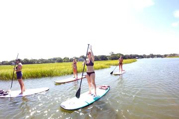 Book Charleston Paddleboard Lessons on Viator