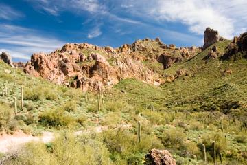 Excursión al atardecer auto-conducida por el desierto de Sonora