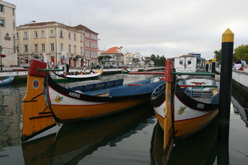Aveiro Tour With Sightseeing Cruise and Lunch