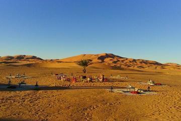 Luxury VIP Camp in Desert Dunes Erg...