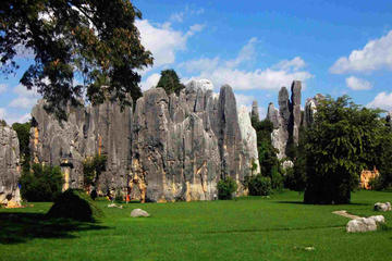 1 Day Kunming Stone Forest and...
