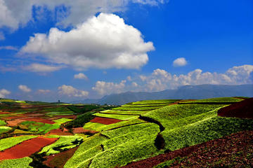 2 Days Kunming Dongchuan Red Land...