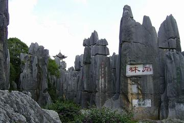 One day private tour to Stone Forest and Guangdu Old Town