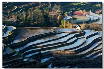Private  6Days Kunming Yuanyang and Jianshui Tour