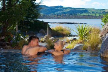 Shore Excursion: Rotorua's Polynesian Spa Heaven from Tauranga