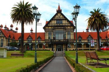 Shore Excursion: Rotorua Sightseeing Tour from Tauranga