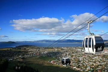 Shore Excursion: Skyline Rotorua from Tauranga