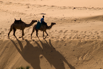 Private Tour of St Simeon's Monastery by Camel*