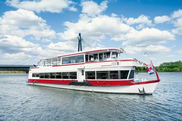 Crucero turístico por el canal del Danubio en Viena