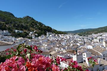 Private Day Trip from Seville: The White Towns of Andalusia