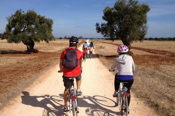 Puglia Bike Tour: Cycling Through the...