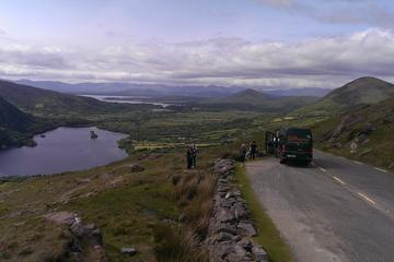 7-Day Driftwood Treasure Ireland ...