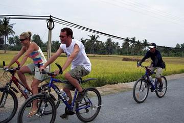 Mekong Rice Farm Cyclin…