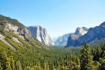Tagesausflug zum Yosemite-Nationalpark ab San Francisco