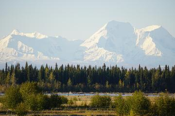 Majestic Denali National Park Wilderness and Aurora tour