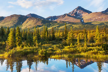 Show me Fairbanks and North Pole City Tour