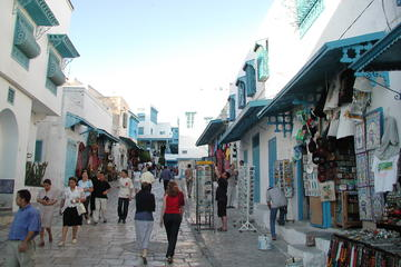 Carthage and Sidi Bou Said Half-Day