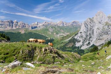 Gita giornaliera privata sui Pirenei