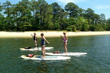 Stand Up Paddleboard Eco-Tour of...