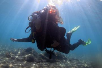 Half-Day Scuba Diving Tour in Gran...