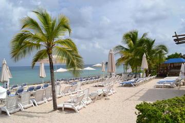 Cozumel Shore Excursion: Playa Uvas...
