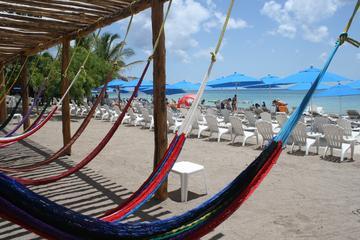 Pase privado a la playa de Playa Uvas