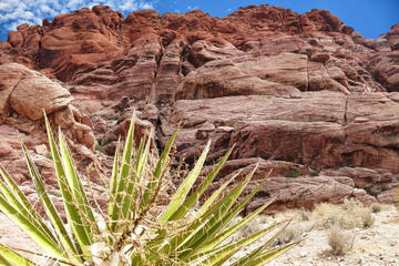 Excursión al cañón Roca Roja