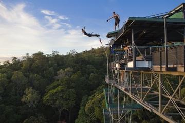 Salto de bungee jumping e Minjin Swing em Cairns