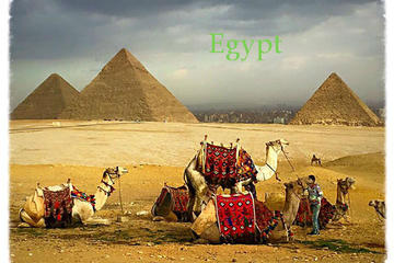 Pyramids and Saqqara day tour