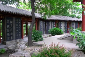 One Day Historic Tour of Shaanxi Provincial History Museum - Xi'an Museum - Stele Forest Museum