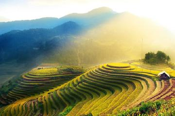 Rice Terraces Sightseeing and Minority Village Visiting From Guilin