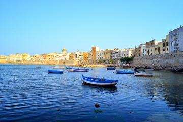 Trapani city centre and Saltpans Reserve
