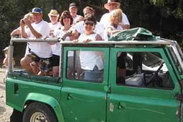 Jungle Jeep Experience