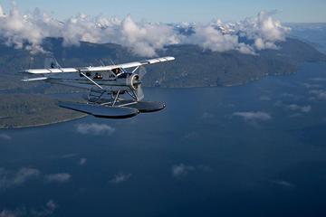 Sightseeing Flight of Ketchikan Alps and Crab Feast
