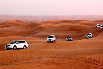 Safari dans le désert et dîner barbecue à Dubaï