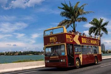 Miami-Tagesausflug von Orlando mit Hop-on-Hop-off-Bustour