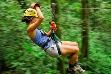 3.5-Hour Small-Group Canopy Tour from Manuel Antonio